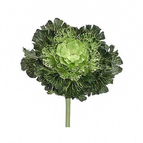 11 Inch Japanese Silk Cabbage Spray Green