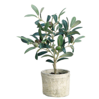 12 Inch Silk Olive Tree in Clay Pot
