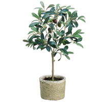 19.5 Inch Silk Olive Tree in Clay Pot