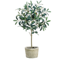 26 Inch Silk Olive Tree in Clay Pot