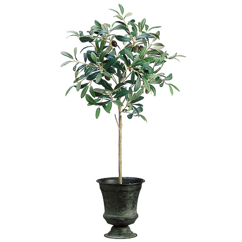 30 Inch Silk Olive Topiary in Tin Urn