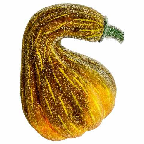 7.5 Inch x 5.5 Inch Beaded Gourd