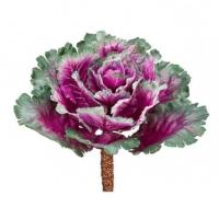 11.5 Inch Ornamental Artificial Cabbage Purple Green
