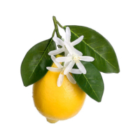 5 Inch Fake Lemon With Flowers