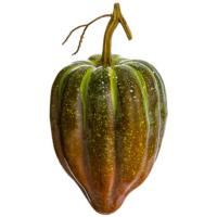 9 Inch Weighted Artificial Gourd Orange Green
