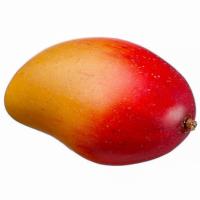 3.2 Inch Artificial Mango