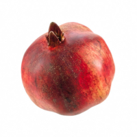 3.9 Inch Weighted Artificial Pomegranate Red