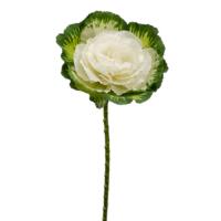 19 Inch Silk Cabbage Spray Green White