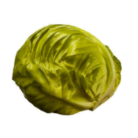 4.5 Inch Half Artificial Cabbage Green