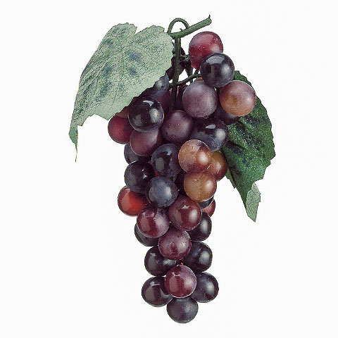 7 Inch Faux Grape x51 Two Tone Burgundy