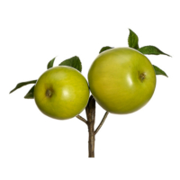 8 Inch Faux Apple Pick Green