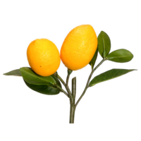 8.5 Inch Artificial Lemon Pick