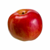 3.9 Inch Foam Weighted Artificial Apple Red