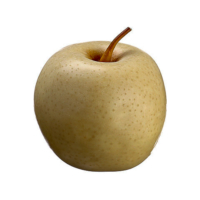2.9 Inch Weighted Faux Apple Yellow