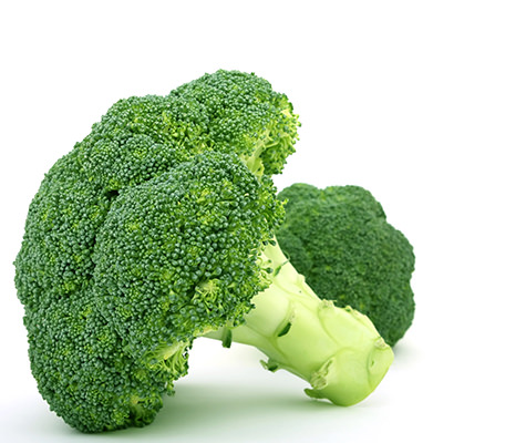 Amazing Produce Customer Service Artificial Broccoli