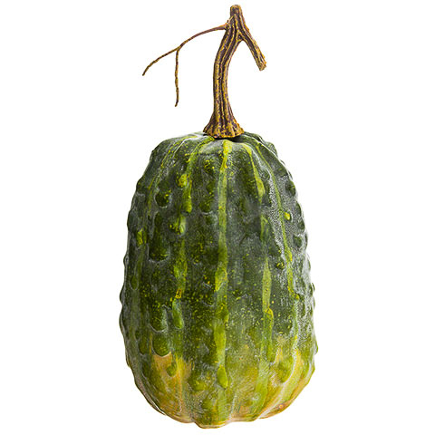 9 Inch Weighted Faux Gourd Green