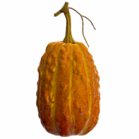 9 Inch Weighted Faux Gourd Orange