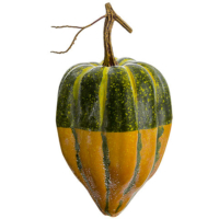 9 Inch Weighted Artificial Gourd Green Yellow