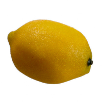 2.7 Inch Weighted Artificial Lemon