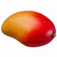 3.2 Inch Artificial Mango