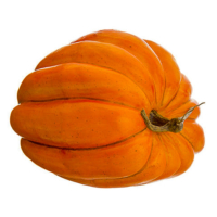 11.5 Weighted Artificial Pumpkin Orange