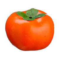 2.85 Weighted Artificial Persimmon