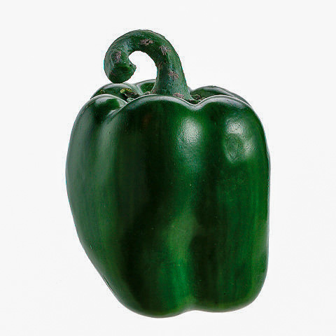 3.5 Inch Weighted Artificial Bell Pepper Green