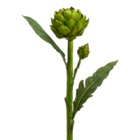 24 Inch Artificial Artichoke Spray Green
