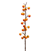40 Inch Artificial Crab Apple Spray Orange