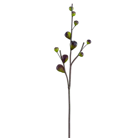 30 Inch Artificial Fig Branch Plum Green