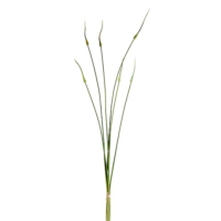 46 Inch Silk Onion Spray Bundle Green