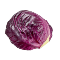 4.5 Inch Half Faux Cabbage Purple