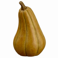 16 Inch Fake Gourd Tan