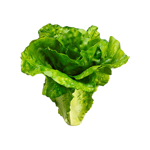 6 Inch Artificial Lettuce Green