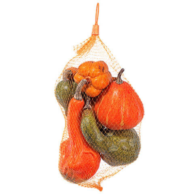 9 Inch Pumpkin Gourd Assortment (7 Per/Bag)