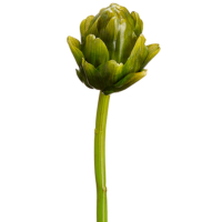 9.5 Inch Faux Artichoke Stem Green